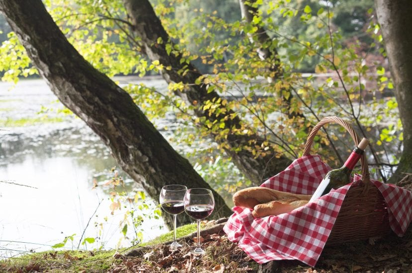 picnic at lake