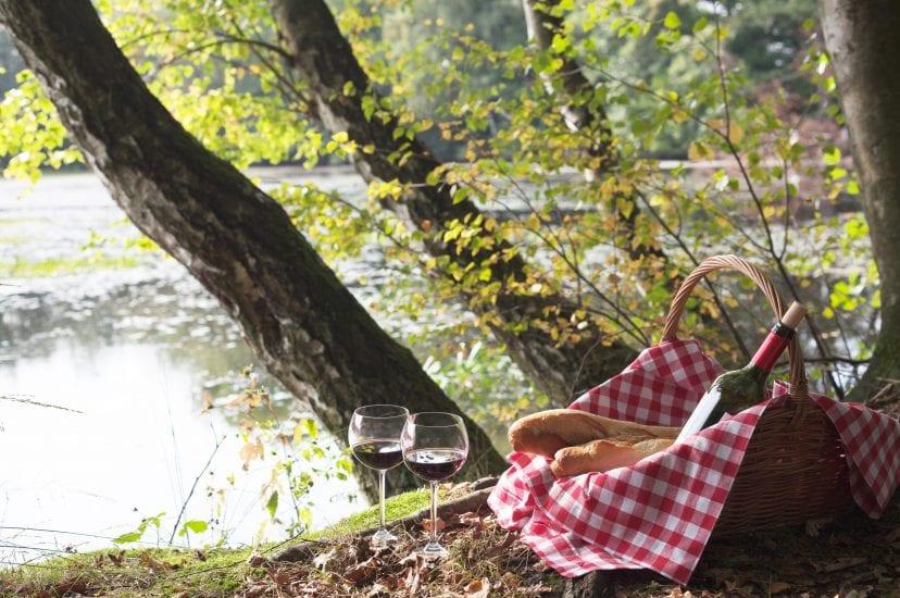 picnic at lake